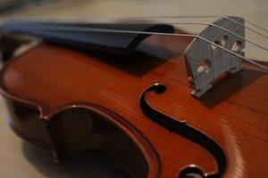 Einsteiger Geige für Anfänger