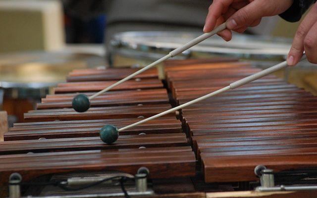Einsteiger Xylophon für Anfänger